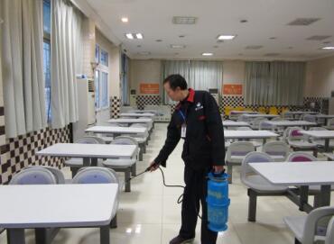重庆食堂灭鼠