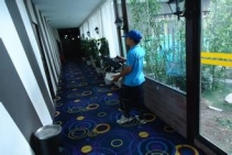 重庆酒店灭鼠